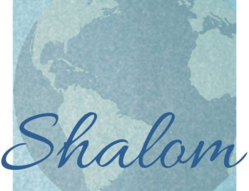 December 2017: Shalom / UN-NGO Newsletter