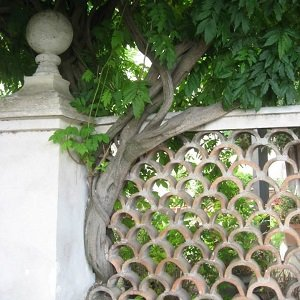 detail of fence in Tivoli, Italy